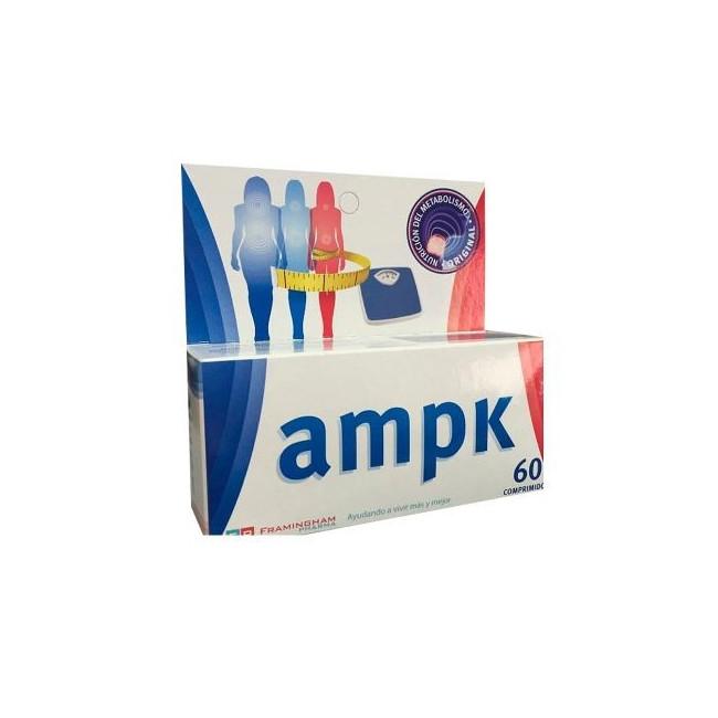 AMPK COMP X 60